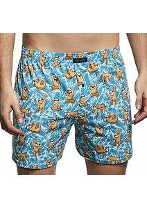 6b94675c4 Pánské spodní prádlo, boxerky, trenky, trenýrky, slipy, tílka a ...